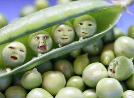 [FOTORITOCCO] – Baby peas (omaggio a Toy Story 3)