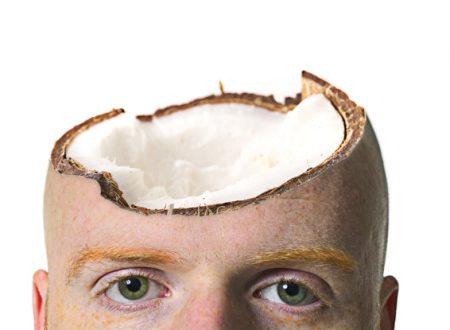 [FOTORITOCCO] – Coconut Head