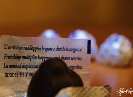 [FOTOGRAFIA] – Francis Bacon disse: